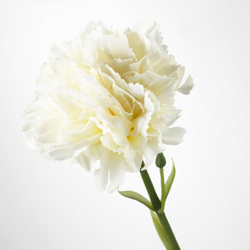 SMYCKA artificial flower