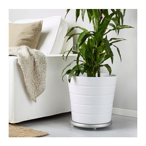 SOCKER augalų perkėlimo padėklas