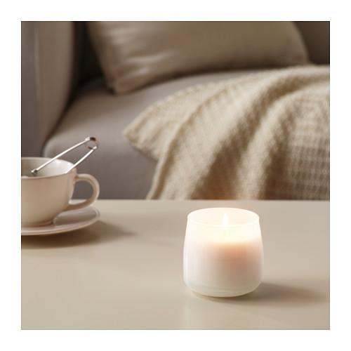 FRISKHET kvapioji žvakė stikl. indelyje